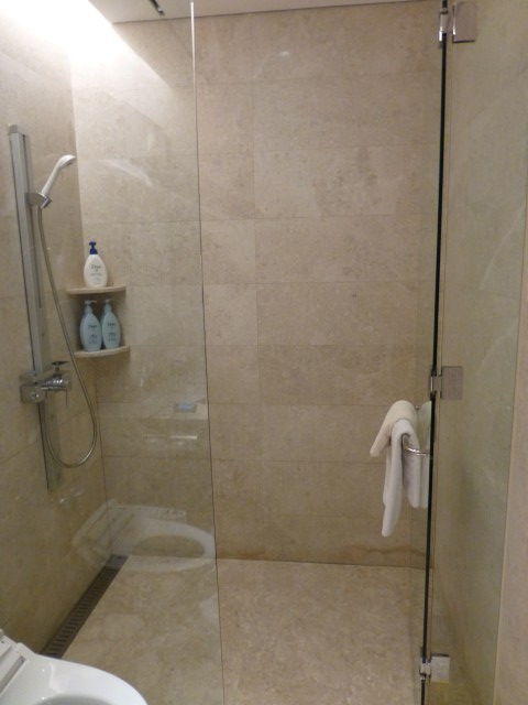 Shower Room in the Lounge