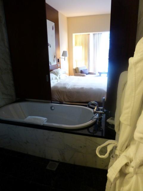Park Hyatt Zurich - Standard Room - View from the Bath
