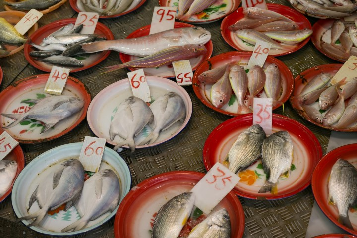 Fresh fish waiting to be your dinner.