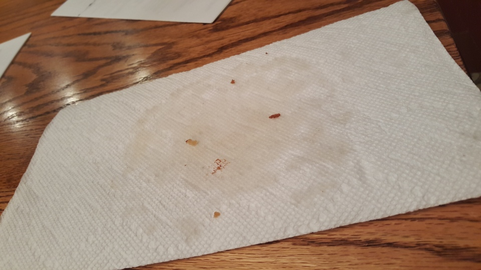 That's a greasy paper towel - but a surprisingly tasty cookie.