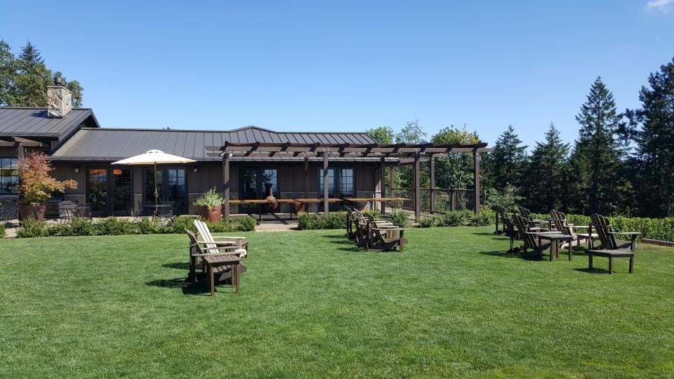 Perfect spot to enjoy a picnic and a glass of wine - Durant Vineyard